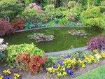 ogród z oczkiem